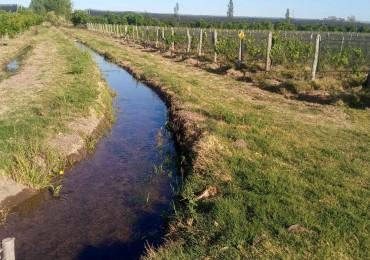 Vendo Finca 2 hectáreas en Rama Caida